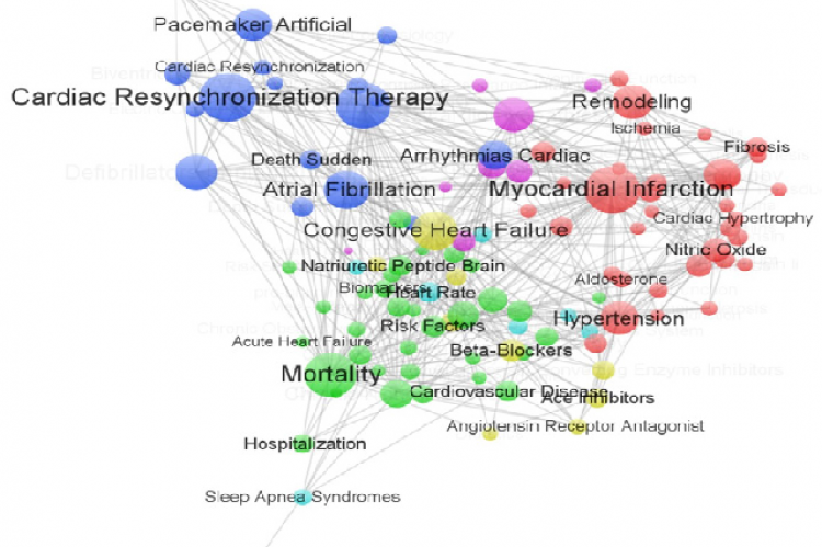 The network structure of high-frequent keywords in Chronic Heart Failure