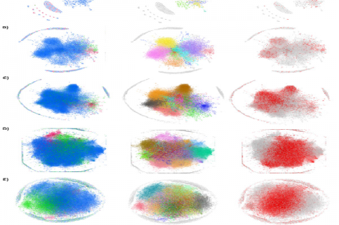 Direct citation network for (A) 1906-1981, (B) 1982-1991, (C) 1992- 2000,