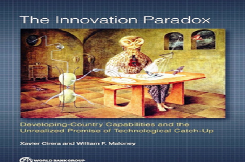 The Innovation Paradox-Developing Country Capabilities and the Unrealised Promise of Technological Catch-Up.